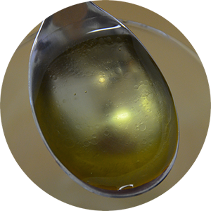 PreNat®  Antioxidant