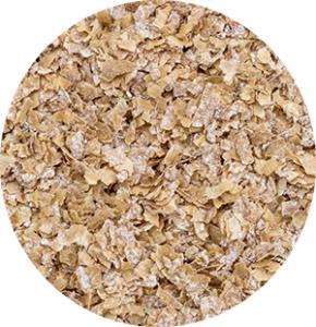 wheat middlings | EccoFeed